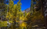 Обои интересах рабочего стола: США, деревья, осень, горы, лес, Колорадо, река, Аспен