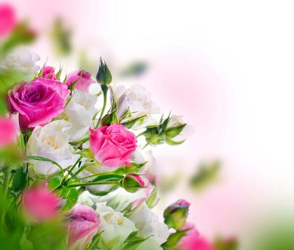 Стих к поздравлению цветы 986