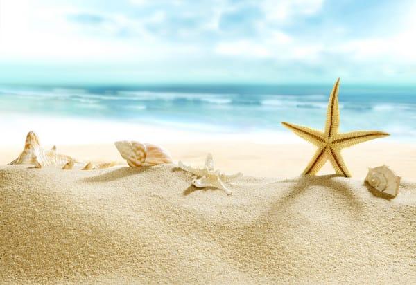 Обои на телефон лето море пляж