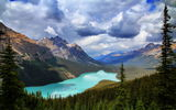 Обои: Banff National Park, Peyto Lake, горы, озеро, Canada, природа, лес