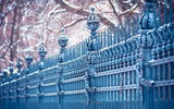 Обои: cold, Leipzig, urban, trees, fence, city, blue