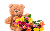 Обои: Teddy, flowers, roses, colorful, розы, with love, bear, мишка