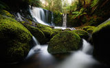 Обои: Tasmania, камни, водопад, Horseshoe Falls, природа, мох, Australia, Mount Field national park