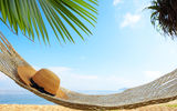 Обои: beach, sea, hammock, palm tree