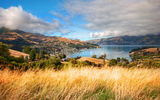 Обои: New Zealand, south island, Aotearoa, Akaroa, Новая Зеландия