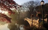 Обои для рабочего стола: trees, bridge, autumn tree, lamppost, central park, new york city