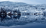 Обои: tree, forest, lake, cottage, snow, water