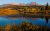 Обои для рабочего стола: canada, alberta, morning dew - cottonwood slough, jasper national park