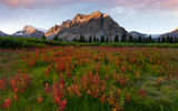 Обои для рабочего стола: canada, fields of red - crowfoot glacier, banff national park, bow lake, alberta, icefields parkway