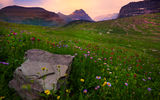 Обои для рабочего стола: glacier national park, the valley of light and color - logans pass, montana