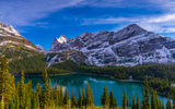 Картинки на телефон: Lake OHara, горы, пейзаж, British Columbia, Yoho National Park