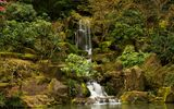 Обои: Portland Japanese Garden Waterfall, парк, водопад, сад