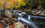 Обои: Smoky Mountains National Park, осень, Грейт Смоки Маунтинс Парк, штат Теннесси