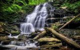Обои для рабочего стола: Ricketts Glen State Park, Pennsylvania, природа, водопад, деревья, Риккетс Глен Стейт Парк, скалы
