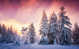Обои для рабочего стола: winter, Schwarzwald, Germany, Baden-Wurttemberg, snow