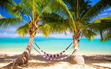 Обои: пальмы, palms, берег, sea, ocean, summer, tropical, paradise, пляж, sunshine, vacation, море, beach, тропики, hammock, песок