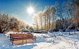 Обои: парк, nature, bench, sun, зима, forest, солнце, park, лес, winter, scenery, sunset, cool, скамейка, пейзаж, sky, landscape, небо, snow, снег, природа, nice, white, beautiful
