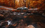 Обои для рабочего стола: Porsche, Side, Stance, View, Orange, Works, Forest, Cayman