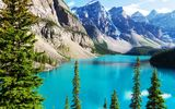 Обои: Canada, lake, Moraine, лес, Banff National park, landscape, озеро