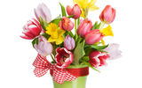 Обои: цветы, bouquet, flowers, ленты, ribbon, spring, tulips, букет, лепестки, тюльпаны, весна