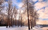 Обои: холод, season; silence sky, landscape, chill december, природа, snow weather, Winter, небо, white wonderland, bright, nature, festive, road, pathway, дорога, облака, Зима, деревья, снег, quiet, forest, rural scene, belarus, иней, пейзаж