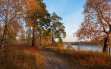 Обои для рабочего стола: Autumn, autumn mood, trees, river, forest, trace, fallen leafs