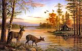 Обои для рабочего стола: birch, nature, Quiet Evening, deer, Mary Pettis, painting, river