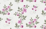 Обои: retro, vector, floral, текстура, with, pattern, flowers