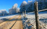 Обои: природа, trees, winter, дорога, зима, forest, деревья, nice, snow, небо, лес, пейзаж, sky, path, white, nature, снег, beautiful, cool, road