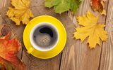 Обои: autumn, чашка, кофе, maple, leaves, осень, cup, coffee, осенние листья, клён, fall