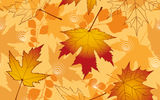 Картинки на телефон: autumn, осенние, leaves, fall, maple, листья