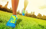 Обои: slippers, physical activity outdoors, grass, training
