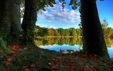 Обои: natures colors, trees, sky, lake
