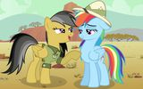 Обои: mlp, rainbow dash, daring do, my little pony, mlpfim