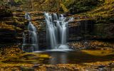 Обои: листья, ricketts glen state park, водопад, каскад, штат пенсильвания, пенсильвания, осень