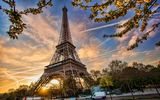 Картинки на телефон: Весна, Eiffel tower, Cityscape, paris, blossom, spring, france