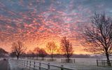 Картинки на телефон: winter, morning, uk, sunrise