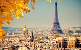 Обои: eiffel tower, paris, франция, la tour eiffel, france, париж