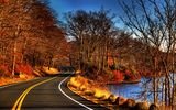 Картинки на телефон: view, water, river, leaves, fall, autumn, trees, forest, Road