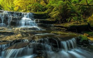 Картинка Australia, Leura Cascades, waterfalls, Blue Mountains, long exposure, sunlight