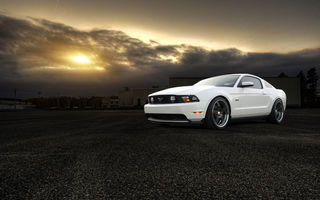 Обои белый, 50, форд, front, gt, мустанг, muscle car, white, ford, mustang