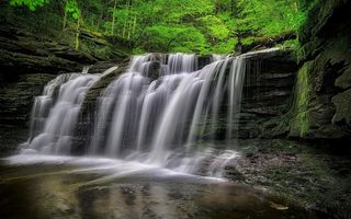 Обои Ricketts Glen State Park, водопад, Pennsylvania, скалы, деревья, Риккетс Глен Стейт Парк, природа