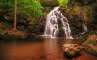 Обои Spruce Flats Falls, деревья, Great Smoky Mountains National Park, пейзаж, водопад, скалы, природа