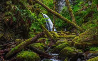 Картинка Lower Dry Creek Falls, Washington, водопад