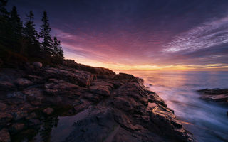 Обои sunset, maine, tree, acadia national park, rock, coast, usa