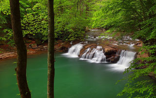Обои Западная Виргиния, река Нью-Ривер, водопад, Lower Glade Creek Falls, деревья, New River Gorge National River, New River, West Virginia, лес, каскад, река