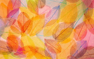 Обои осенние, leaves, autumn, transparent, листья, colorful, abstract