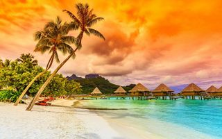 Картинка пальмы, закат, beach, sunset, shore, sea, tropical, море, пляж, paradise, песок, sand, берег