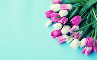 Картинка colorful, tulips, flowers, bouquet, тюльпаны