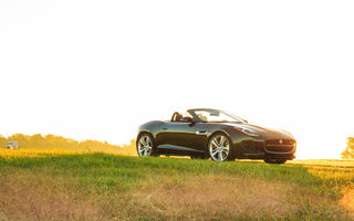 Обои свет, car, grass, V8 S, Jaguar, трава, авто, F-type, green, Convertible, light
